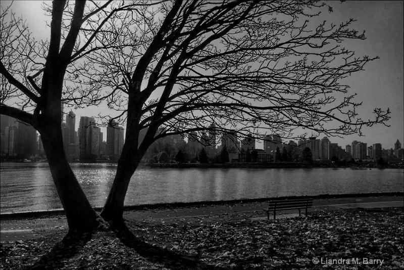 Stanley Park - ID: 12611134 © Liandra Barry