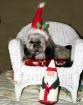 ~ My Santa Claus ...