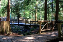 Capilano Suspension Bridge 2d - Vancouver