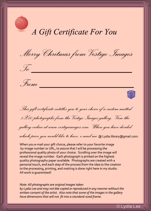 Gift Certificate - ID: 12635417 © Lydia Lee