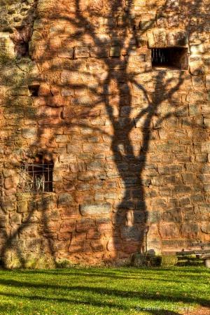 Shadow of a Tree on Landstuhl Castle