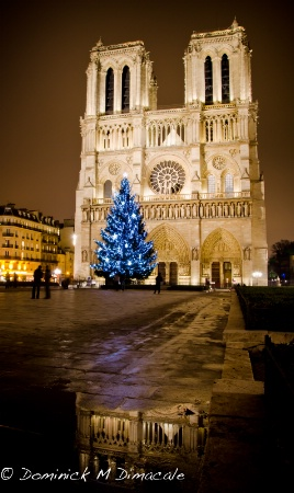 ~ ~ CHRISTMAS IN PARIS ~ ~