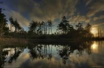 Reflecting Environment