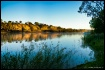 Murray River Morg...