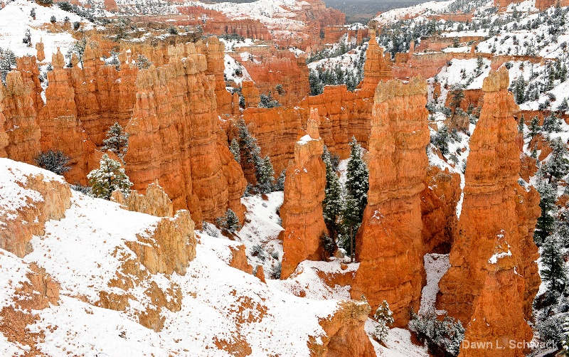 Snowfall in Bryce - ID: 12669444 © Dawn Schwack