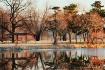 Pond's Reflec...