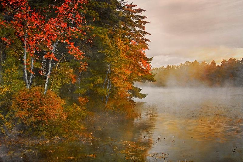 Sea Smoke, Moose Pond