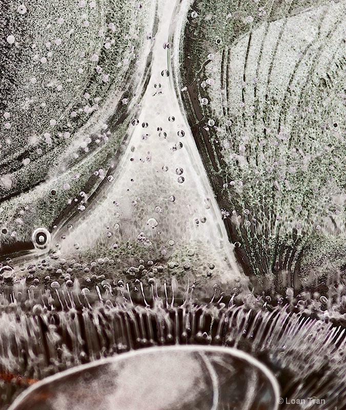 Ice scape 1 - ID: 12681912 © Loan Tran