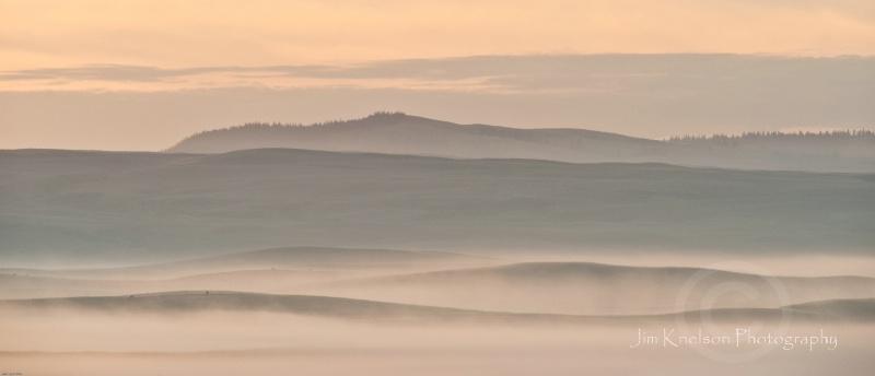 Cypress Hills, Alberta - ID: 12684042 © Jim D. Knelson