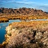 © Patricia A. Casey PhotoID # 12684263: Colorado River Backwater