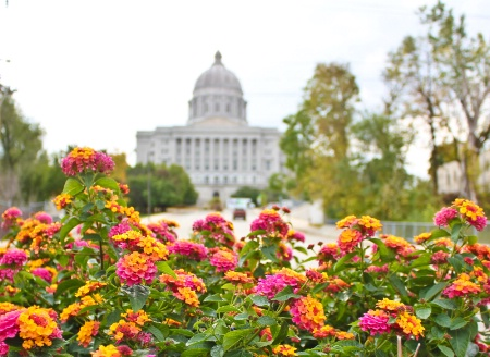 ~Lantanas @ Missouri State Capital~
