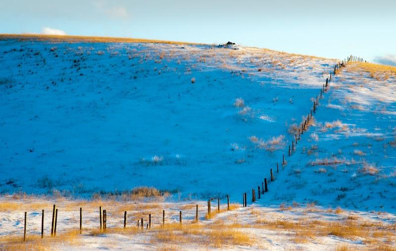 Fenceline in Winter - ID: 12729369 © Kelly Pape
