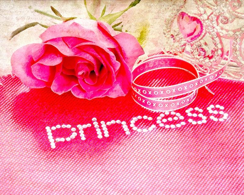~Princess in Pink~