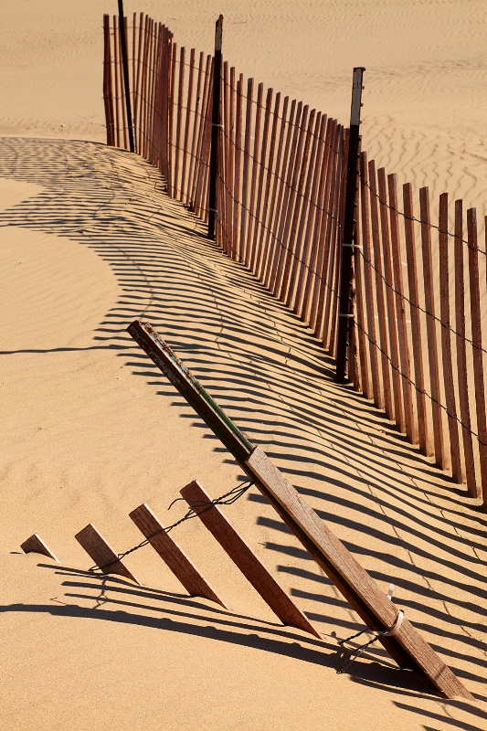 Fences and Shadows