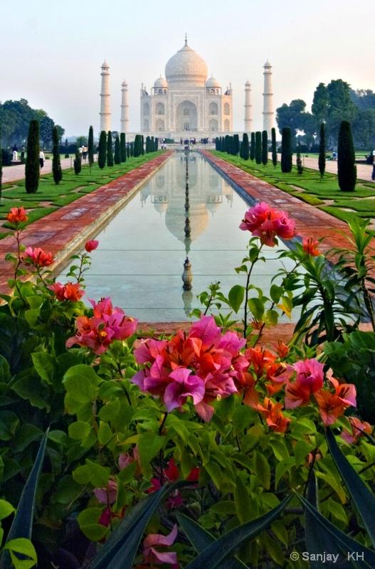 Taj - Morning Shot