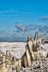 Lake Erie Freeze