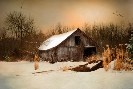 Old Homestead Barn