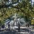 © Mark Seiter PhotoID # 12773928: a walk in the park