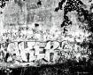 Delhaas Graffiti ...