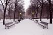 City Park in Snow