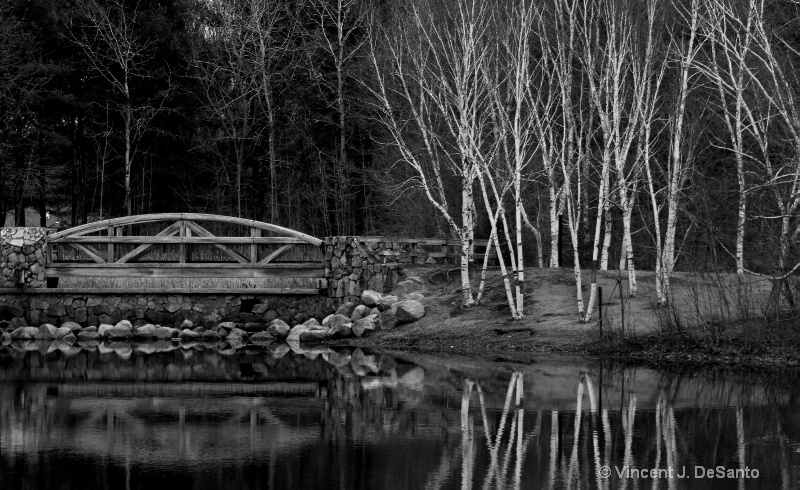 Reflection - Lincoln Woods, Rhode Island