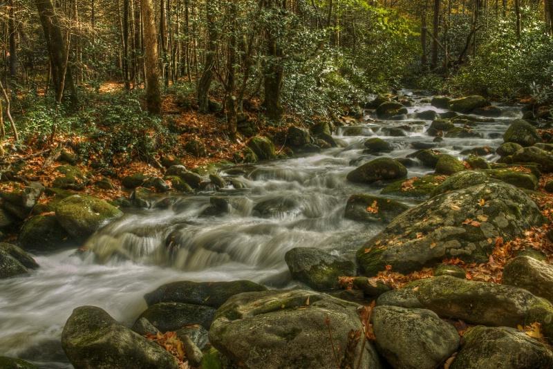Roaring Fork Creek, Smoky Mnts.