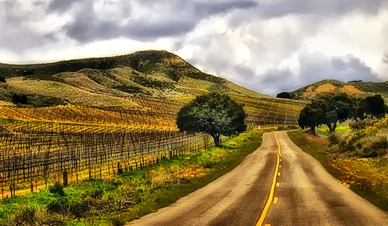 A Country Drive