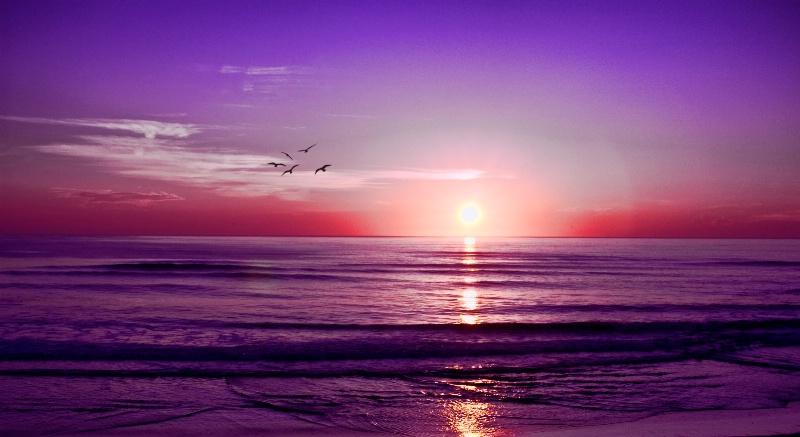 Beach Sunrise - ID: 12807988 © Lydia Lee