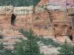 Red Rocks in AZ 1