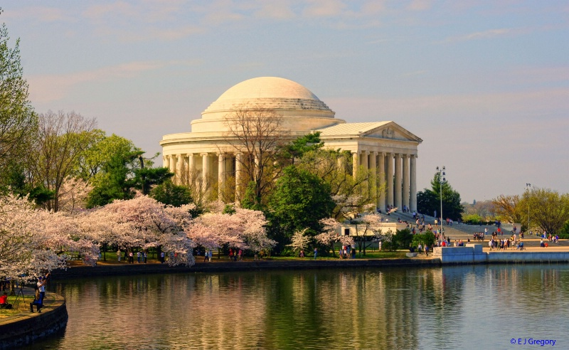Spring at the Tidal Basin - ID: 12843764 © Eloise Bartell