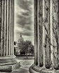 A Capitol View......