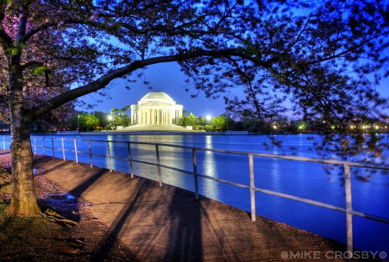 Jefferson Memorial thru the Cherry Blossoms