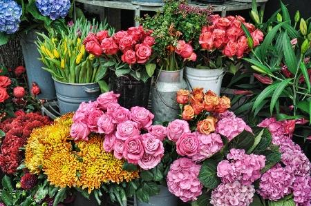 In a London Flower Shop