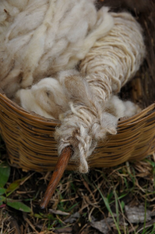 Basket of Wool - ID: 12863147 © Denise Aulie