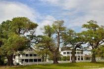 AnteBellum homes that survived Katrina
