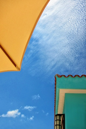 From Under the Umbrella
