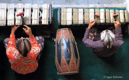 Musicians,Jogjakarta