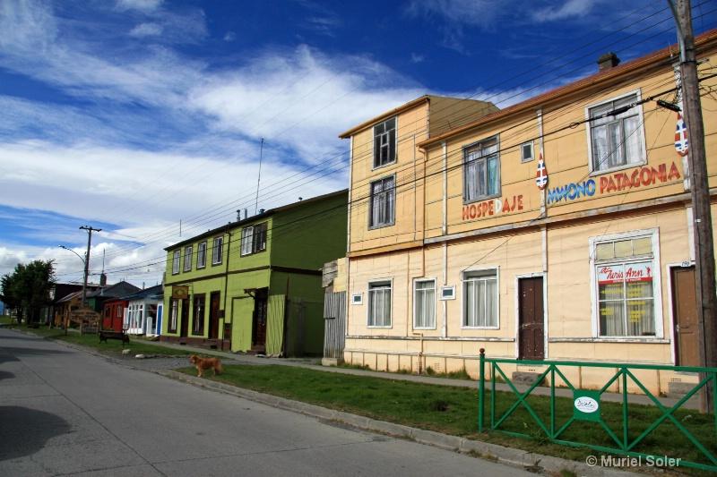 In Puerto Natales - ID: 12892440 © Muriel Soler