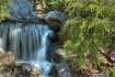 Woodland Cascade