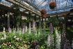 Longwood Garden s...