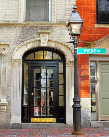 ~Myrtle Street~