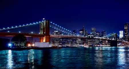 The One And Only Brooklyn Bridge