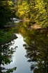 Alabama Creek