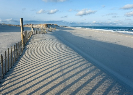 Dune Fence Shadow