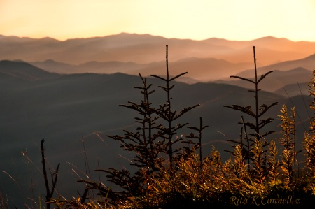 sunset in the smokey's
