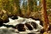 Tioga Creek