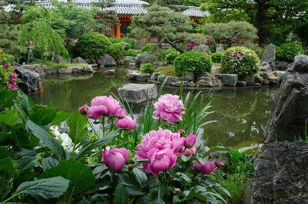 Garden of the Thousand Buddhas