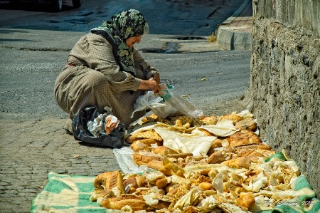 The Bread Lady