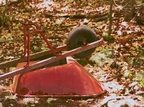 Wheelbarrow in the Woods