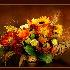 2Happy Thanksgiving - ID: 13022806 © Carol Eade